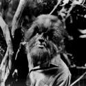 Alex_Stevens_werewolf_Dark_Shadows_1969_325