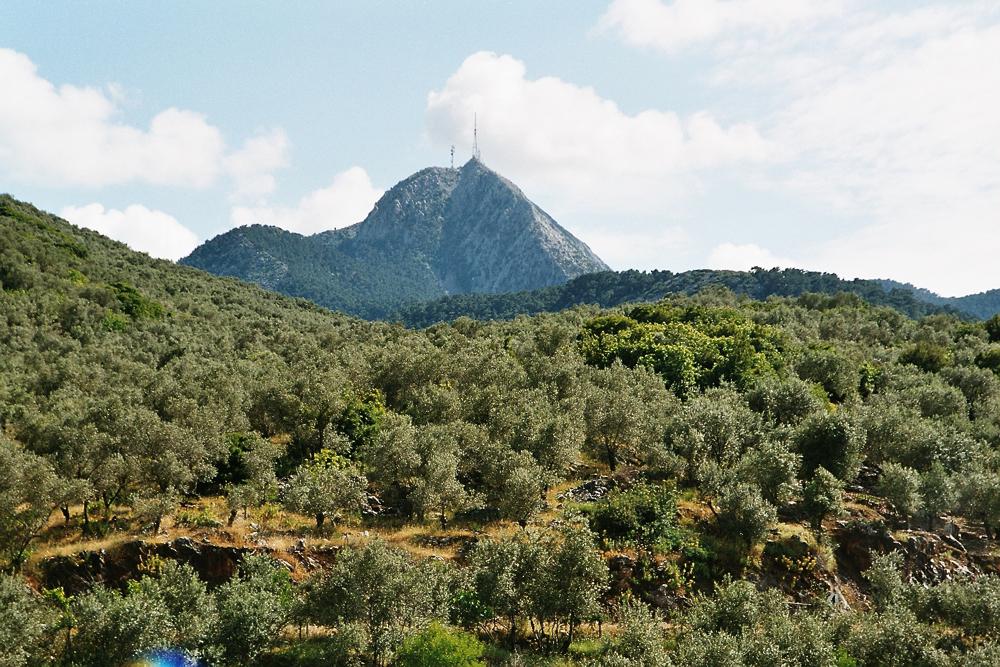 Olympus in Lesbos.